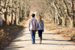 rear view of couple holding hands walking in autumn countryside - 68107405