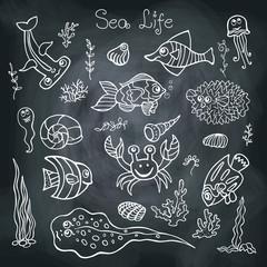 Colorful Doodle set.Funny Sea Life