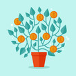 Vector money tree concept in flat style
