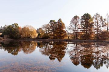 calm autumn lake