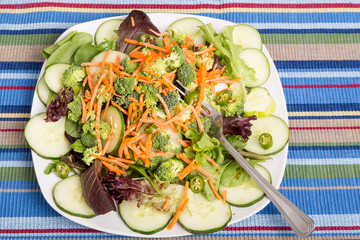 Fresh Salad with Cucumbers and Peppers