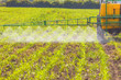 Spreading herbicide - 68111618