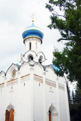 Church Domes in Trinity Sergius Lavra. UNESCO Heritage.