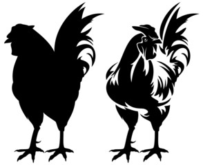 rooster black and white design and silhouette