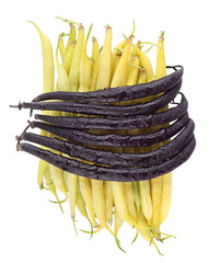 Purple and Yellow Beans isolated on white background.
