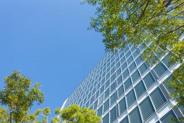 新緑のオフィスビル街
