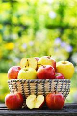 Organic apples in the garden. Balanced diet