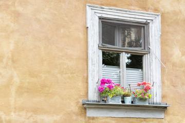 Altes Fenster an einer Häuserfassade mit Blumen