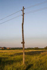 Telephone pole - rural scene