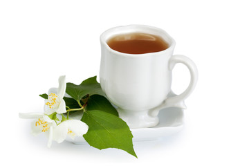 Jasmine tea , isolated