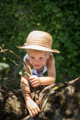 cute boy with straw hat trying climb on a tree