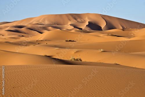 Naklejka Dune del deserto