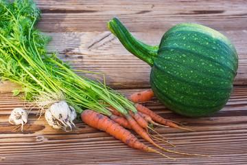 Gemüseernte im Garten