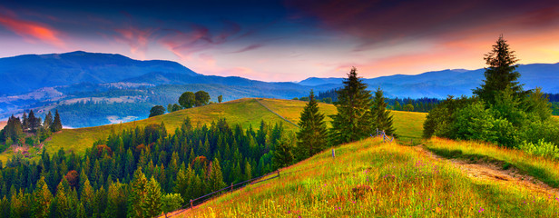 Colorful morning panorama of the  summer mountains.