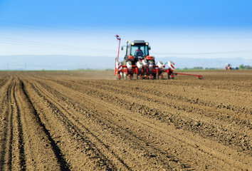 Farmer in tractor sowing crops at field