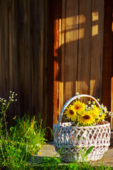 Bouquet of sunflowers with chamomiles in the basket