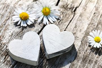 Herzen & Gänseblümchen im Sonnenlicht
