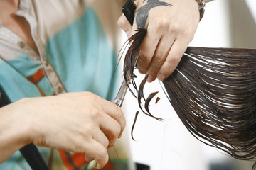 Hair Stylist at Work with Scissors