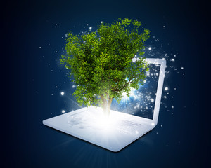 Laptop with magical green tree and rays of light
