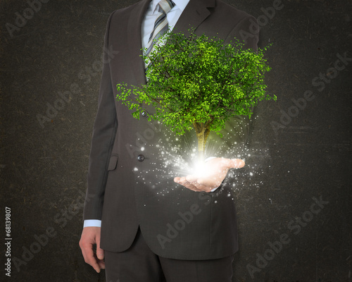 canvas print picture Businessmen hold magical green tree and rays of light