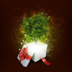Gift box with magical green tree