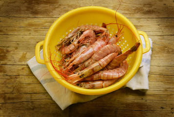 Camarão Gamberi Crevettes Shrimps 虾 Garnelen روبيان Gamba