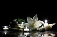 """Постер, картина, фотообои """"white lily, stones and candles"""""""