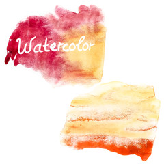 Watercolor art hand paint on white. EPS 10