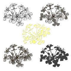 Set of abstract flowers isolated on white background. Hand drawn