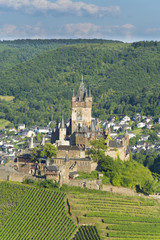 High up on the Vineyard - Reichsburg Cochem