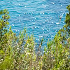 Costa Brava Background