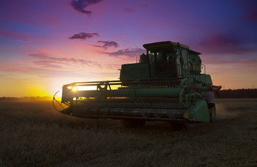 harvesting.