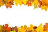 Autumn leaves frame - 68156668