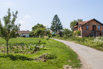 Village during summer