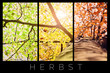 Herbst – Collage