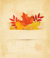 Autumn background with leaves. Vector.