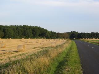 Road next to straw bales
