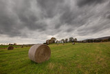 Scenic view of hay bales in a countryside field