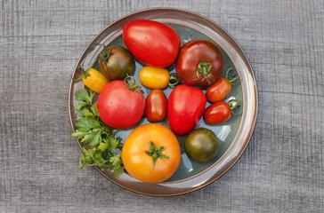 Variety of tomato