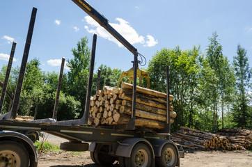 crane loading cut logs on trailer in summer time