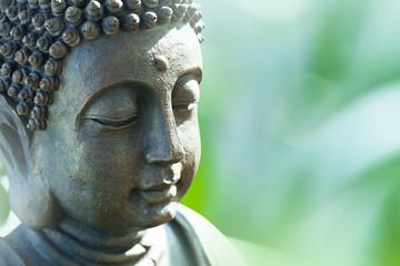 Buddha's head