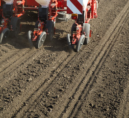 Tractor seeding crops at field.