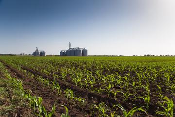 Crops and Silos