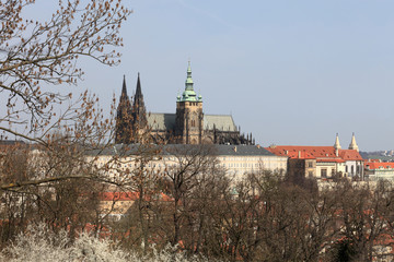 View of St. Vitus Cathedral