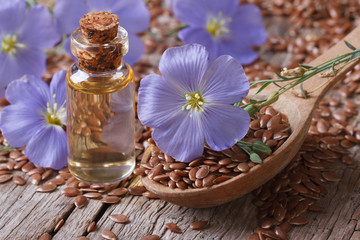 Flowers flax, seeds and oil in a bottle horizontal