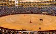 Leinwanddruck Bild - Bullfight