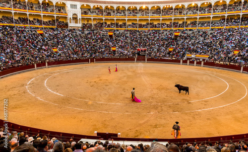 Bullfight - 68177282