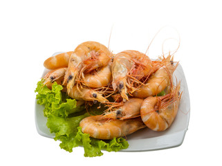 Big tiger shrimps