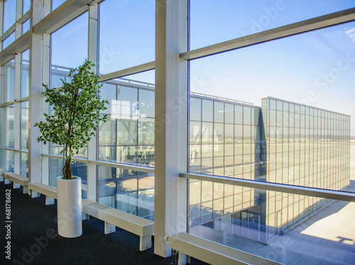 Large windows overlooking the Donetsk airport, a tree growing in
