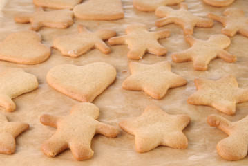 Homemade gingerbread cookies on a baking paper